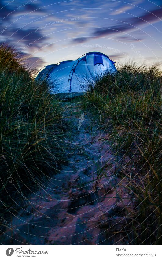 tent lights Vacation & Travel Trip Adventure Far-off places Freedom Expedition Camping Summer vacation Environment Nature Plant Elements Earth Sand Sky Clouds