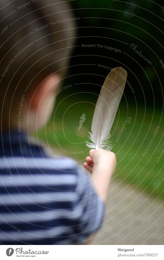 as light as a feather Human being Child Toddler Boy (child) 1 1 - 3 years 3 - 8 years Infancy Breathe Select Observe Touch Discover Flying Blue Green Joy Trust