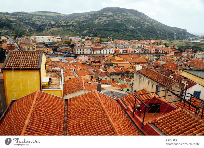 Bosa City Town Roof pink Italy Old town Sardinia Vacation & Travel Sun Sunbeam Shingle Bird's-eye view House (Residential Structure) Panorama (View) Skyline