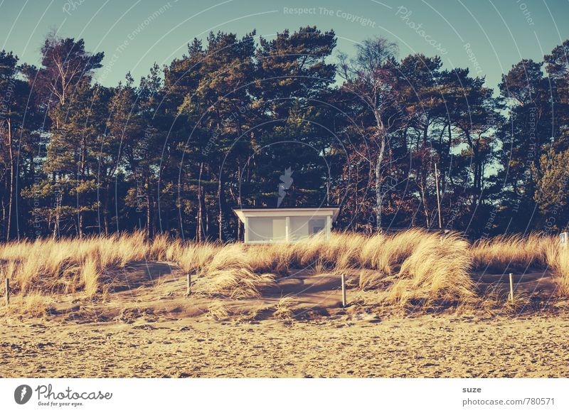 Sky Nature Vacation & Travel Summer Loneliness House (Residential Structure) Beach Forest Coast Sand Authentic Vantage point Safety Baltic Sea Hut Watchfulness