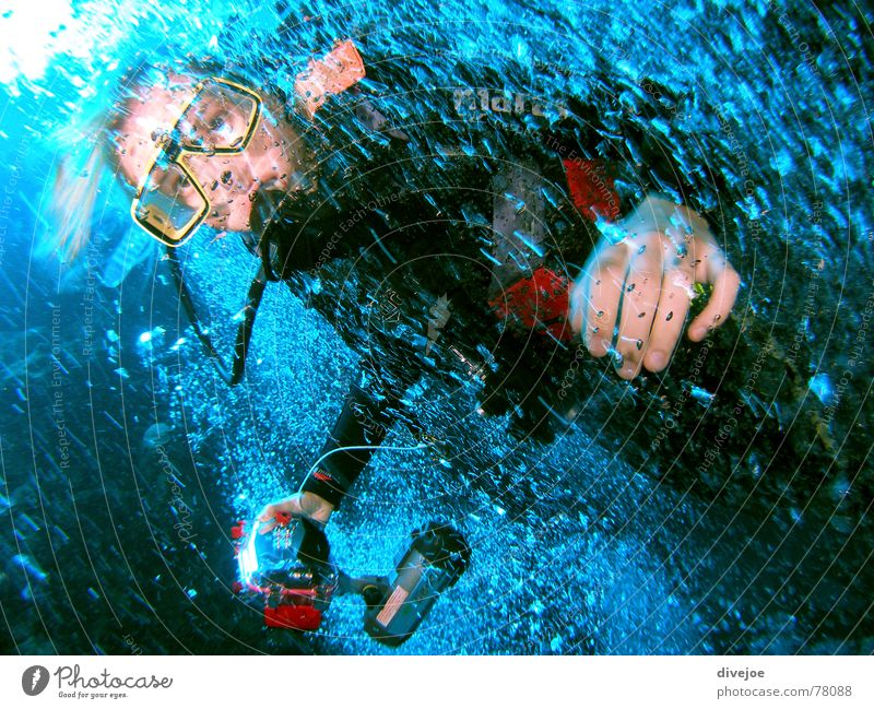 Blubber Diver Water Air Egypt Ocean Dahab Blue divergent diving blue water puffy bubbles red sea