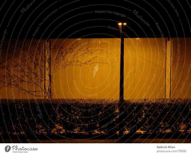 Dark Wall (building) Wall (barrier) Orange Concrete Bushes Street lighting Hedge Night shot Noise control barrier