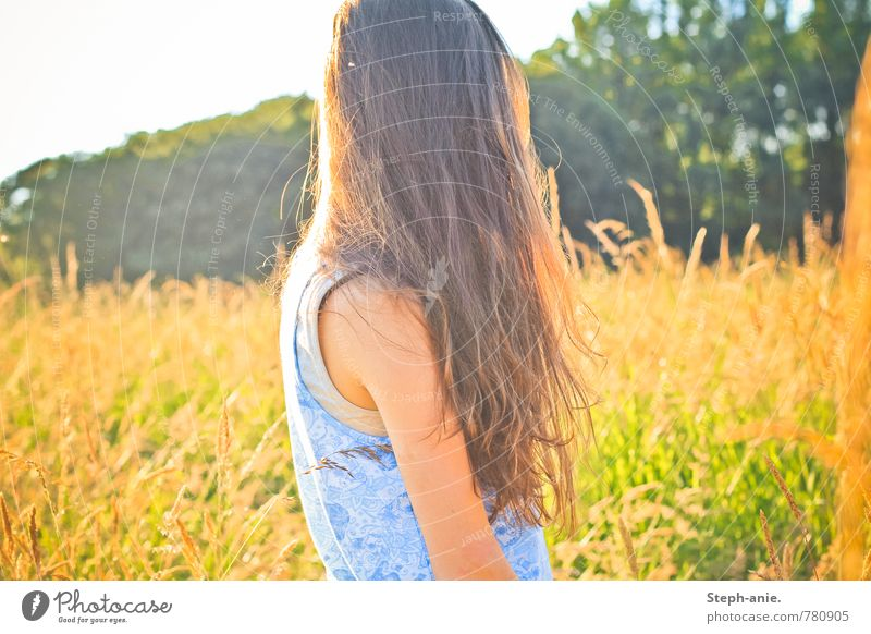 summer Feminine Young woman Youth (Young adults) Woman Adults Hair and hairstyles 1 Human being Summer Beautiful weather Tree Grass Foliage plant Meadow Field