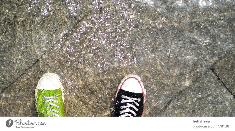 Venice (from the perspective of a pair of shoes) Footwear Green Black Wet Damp Inundated Difference Stone floor Water Deluge Clarity Bright wet feet wet socks