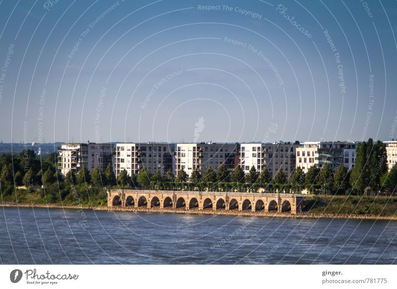 but built close to the water. Environment Water Cloudless sky Sunlight Summer Beautiful weather River bank Cologne Town Port City Skyline