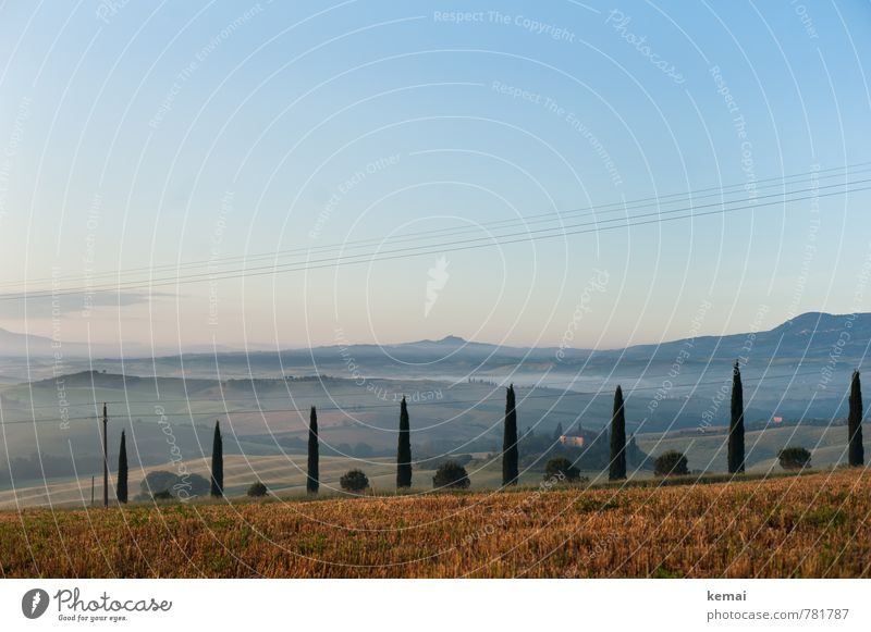cultural landscape Vacation & Travel Tourism Trip Far-off places Freedom Summer vacation Tuscany Italy Environment Nature Landscape Plant Sky Cloudless sky