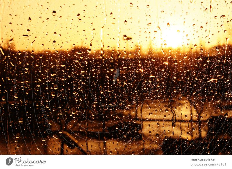it's raining cats and dogs Sunset Window Rain Weather Window pane Glass Drops of water Water