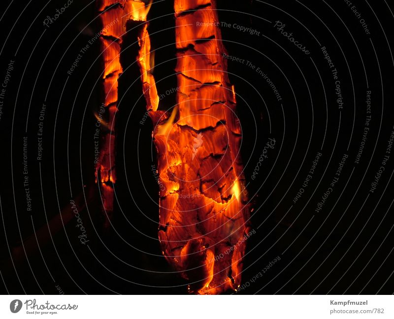 Wood Blaze Romance Leisure and hobbies Burn Embers Swedish fire column
