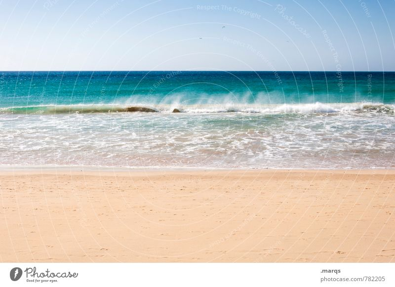 Nature Vacation & Travel Summer Relaxation Ocean Landscape Calm Beach Moody Lifestyle Contentment Waves Joie de vivre (Vitality) Beautiful weather Elements