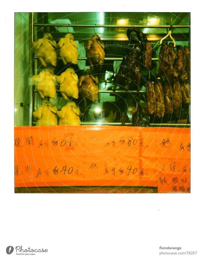 leaf cock felnost Barn fowl Rooster Snack bar Food Hongkong Nutrition Duck polaroid orange Appetite