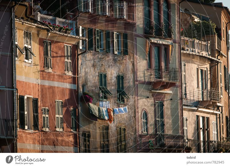 Little Italy Beautiful weather Portofino Village Town Port City Old town Deserted House (Residential Structure) Wall (barrier) Wall (building) Facade Balcony