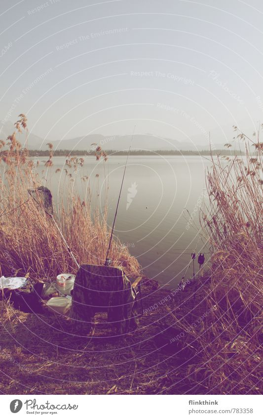 Let's go fishing. Environment Nature Landscape Animal Earth Water Sky Cloudless sky Sunlight Beautiful weather Observe Catch To enjoy Hang Fishing (Angle)