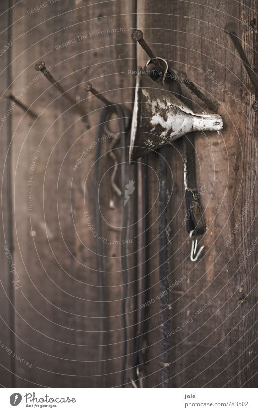 funnel Funnel Nail Wood Old Natural Wooden wall Colour photo Exterior shot Deserted Copy Space bottom Day