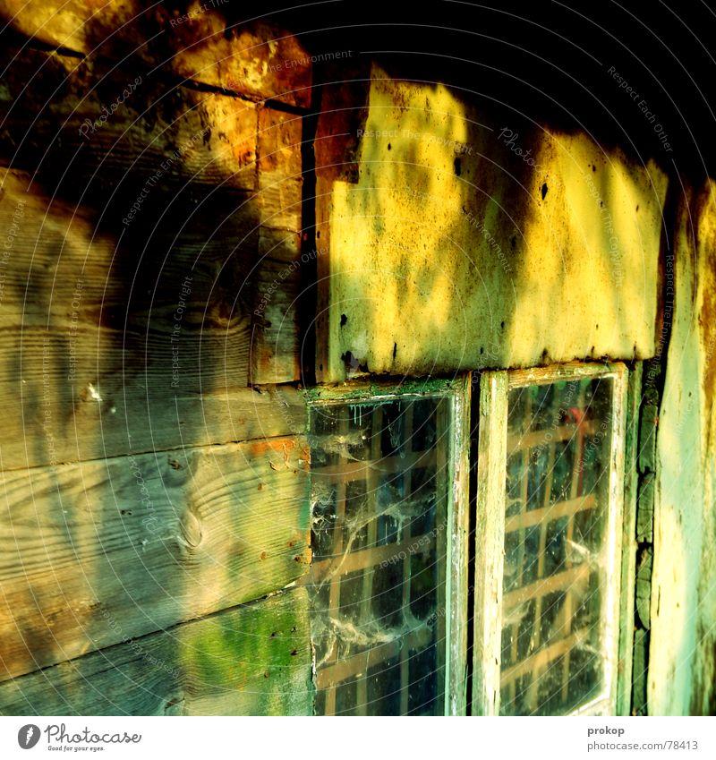 Window Wood Glass Hut Mushroom Poison Witch Precarious Brittle