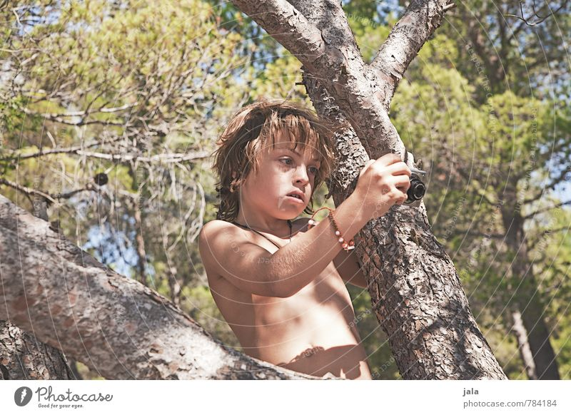 Human being Child Nature Vacation & Travel Beautiful Plant Summer Sun Tree Boy (child) Natural Masculine Wild Infancy Camera Summer vacation