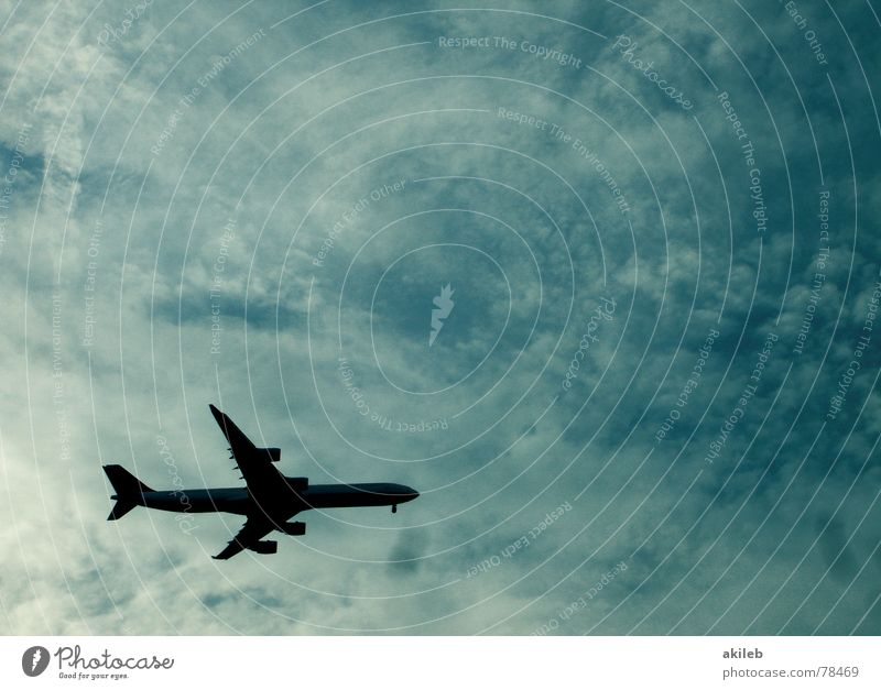 Sky Blue Vacation & Travel Calm Clouds Freedom Air Airplane Aviation Leisure and hobbies Airport Jet Jet fighter