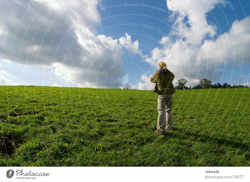 Human being Man Nature Sky Tree Green Blue Plant Summer Clouds Meadow Grass Freedom Landscape Adults Going