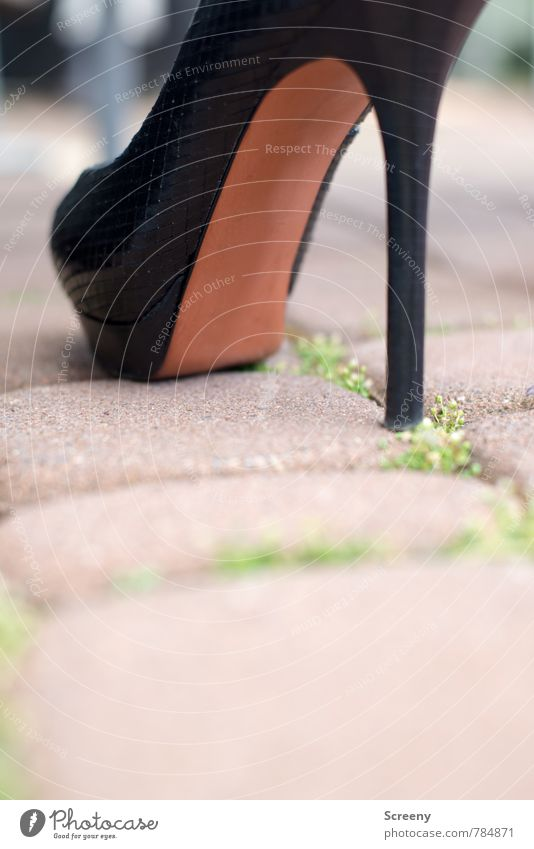 Walk this way... Lanes & trails Paving stone Footwear High heels Stand Elegant Brown Black Self-confident Fashion Tall Colour photo Close-up Detail