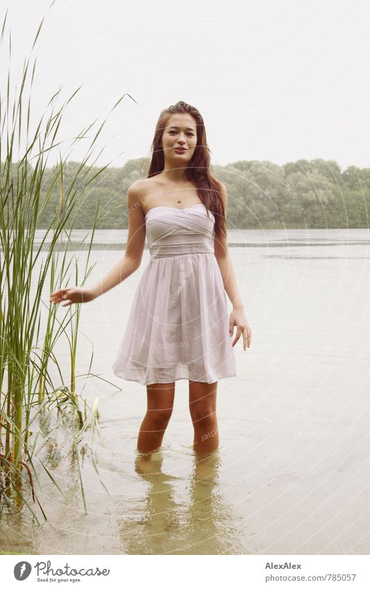 In the lake Swimming & Bathing Trip Adventure Young woman Youth (Young adults) 18 - 30 years Adults Nature Water Summer Rain Common Reed Lake Dress Barefoot