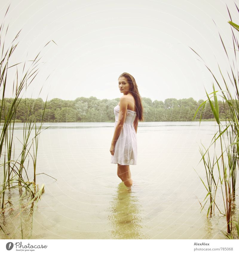 facing Trip Adventure Summer Young woman Youth (Young adults) Body 18 - 30 years Adults Rain Tree Common Reed Lake Dress Barefoot Brunette Long-haired