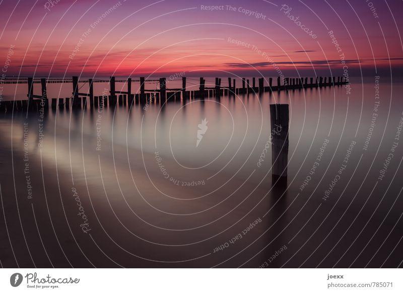 maverick Beach Ocean Water Sky Sunrise Sunset Beautiful weather Coast Baltic Sea Violet Orange Red Black Calm Horizon Idyll Vacation & Travel Wooden stake