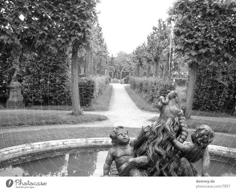 courtyard garden Hofgarten Bushes Well Garden Lanes & trails kaz