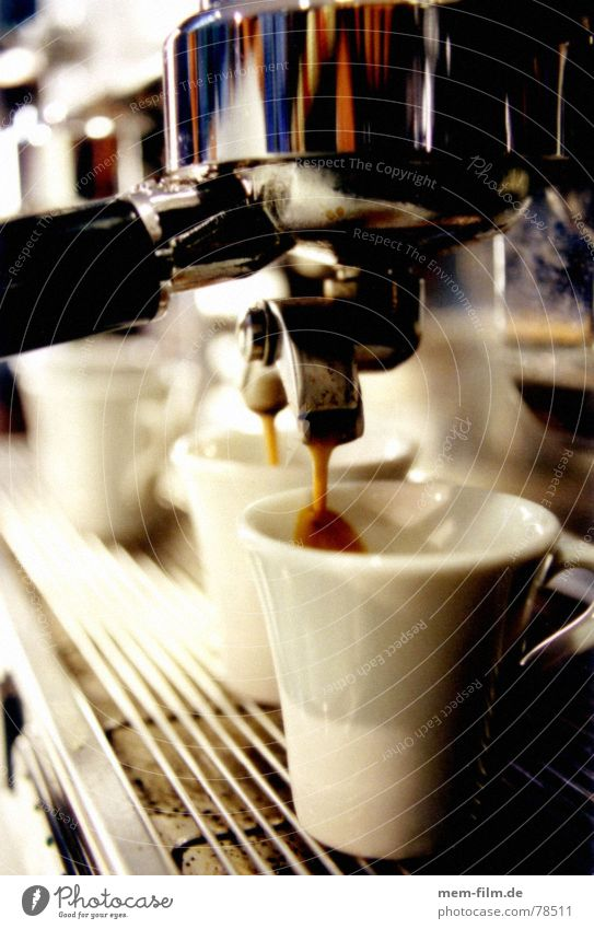 espresso 2 Café Espresso Italy Gourmet Tavern Bar To enjoy Hot Brown Nutrition Counter Gastronomy Physics Caffeine Intoxicant Baked goods monkey Coffee Warmth