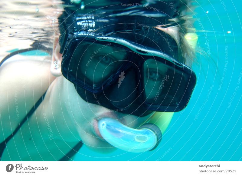 Searching for Nemo Dive Snorkeling Indian Ocean Maldives Atoll Lagoon Diving goggles Lake Portrait photograph Diver Summer Aquatics Swimming & Bathing kuredu