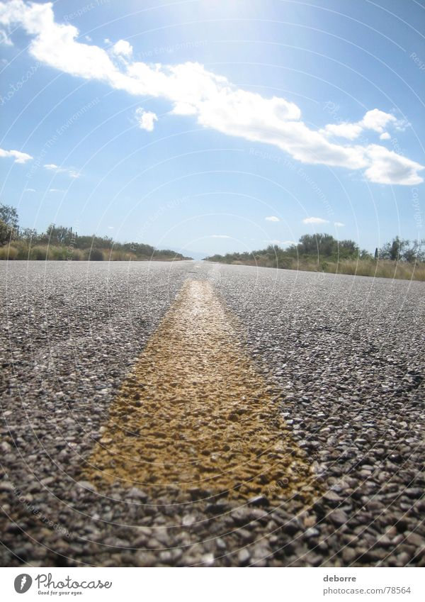 Road markings of a American Highway up close on a sunny day with blue skies. Bushes Border Far-off places Freeway Stripe Asphalt Yellow Gray Clouds Horizon