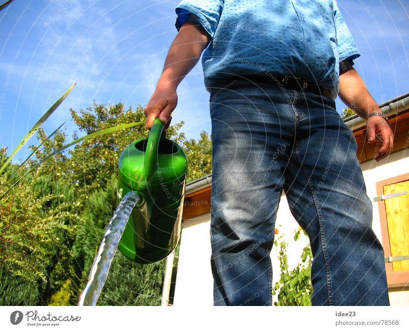 Man Nature Water Flower Green Plant Summer Meadow Blossom Grass Garden Park Power Earth Perspective Jeans