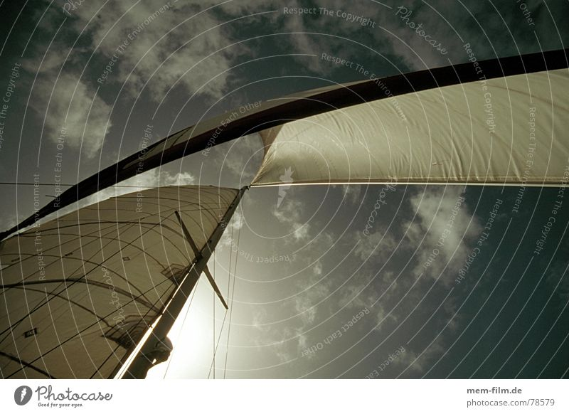 sails Watercraft Ocean Lake Clouds Summer Sailboat Vacation & Travel Sailing White Dream Infinity Regatta Navigation Sailing ship Captain Windjammer Headwind