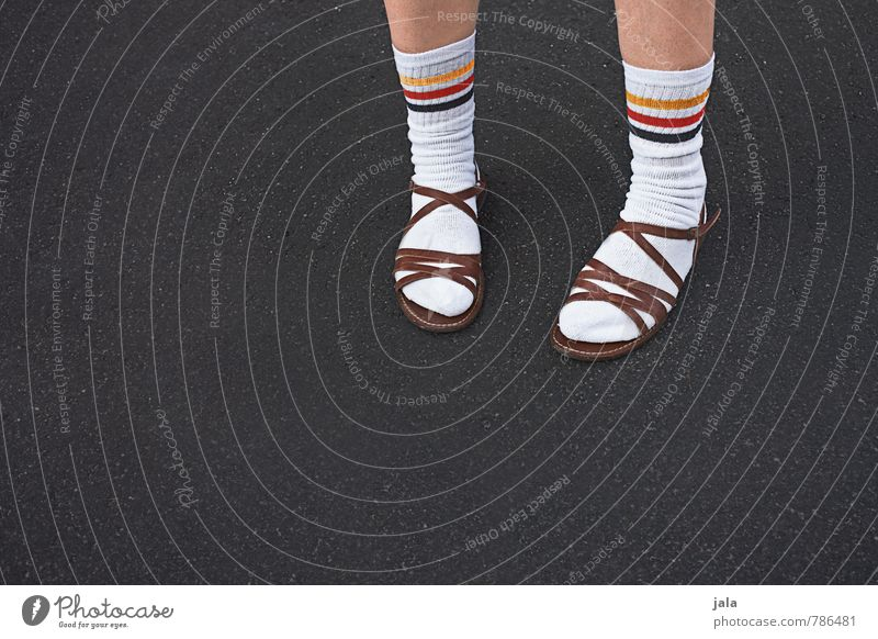 nonchalantly Human being Legs Feet 1 Stockings white socks sportsocks Sandal Authentic Good Hideous Original Tasty Characteristic Germany Colour photo