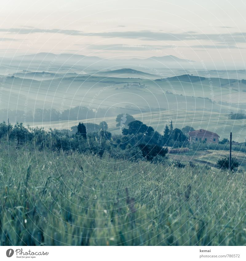While the earth sleeps Environment Nature Landscape Sky Clouds Horizon Summer Beautiful weather Fog Grass Bushes Meadow Hill Tuscany Italy