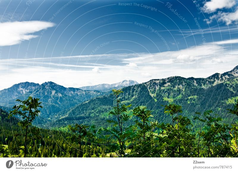 Sky Nature Vacation & Travel Blue Green Summer Calm Landscape Clouds Forest Environment Mountain Meadow Lanes & trails Lake Leisure and hobbies