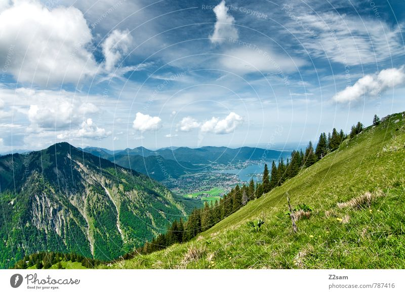 Tegernsee Tourism Trip Hiking Environment Nature Landscape Sky Clouds Summer Beautiful weather Tree Alps Mountain Lake Tall Blue Green Serene Calm Relaxation