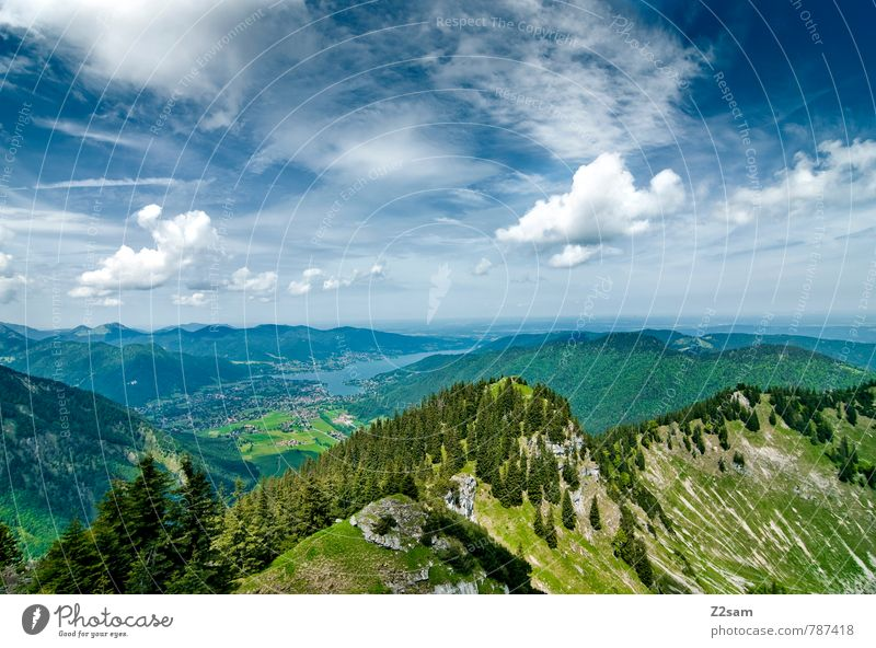 Tegernsee Vacation & Travel Trip Hiking Climbing Mountaineering Environment Nature Landscape Sky Clouds Summer Beautiful weather Tree Forest Alps Peak Lake