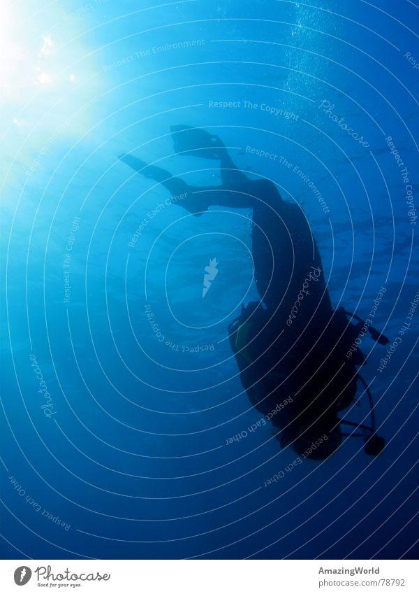Water Ocean Blue Freedom Dive Infinity Deep Aquatics Diver Egypt Underwater photo