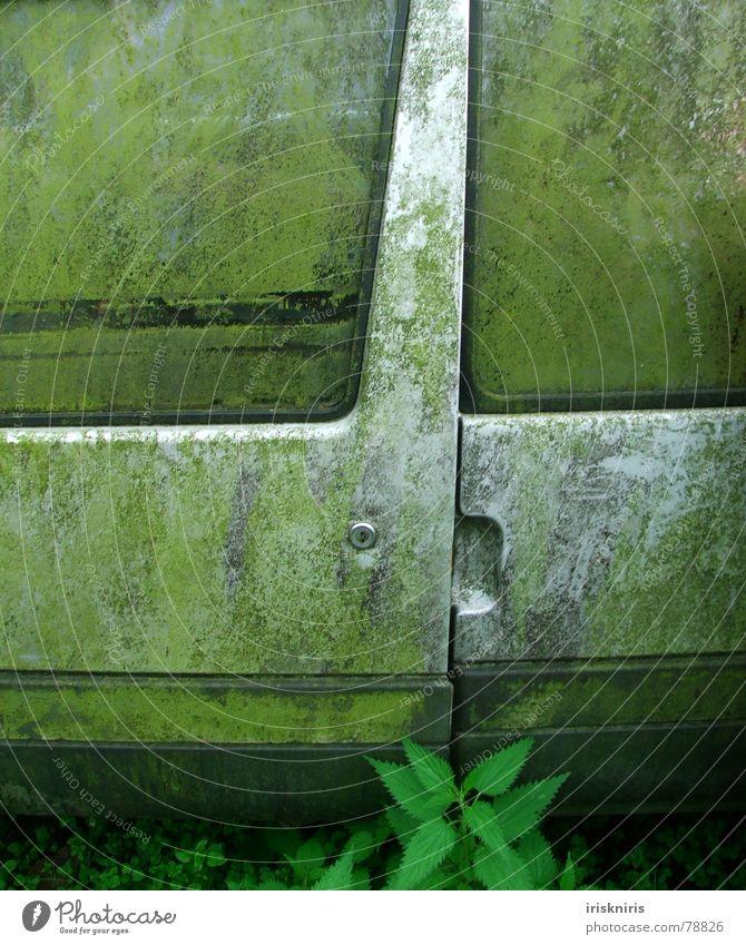 Nature Green Window Gray Car Metal Dirty Transport Car door Transience Cleaning Derelict Silver Door handle Scrap metal Trash