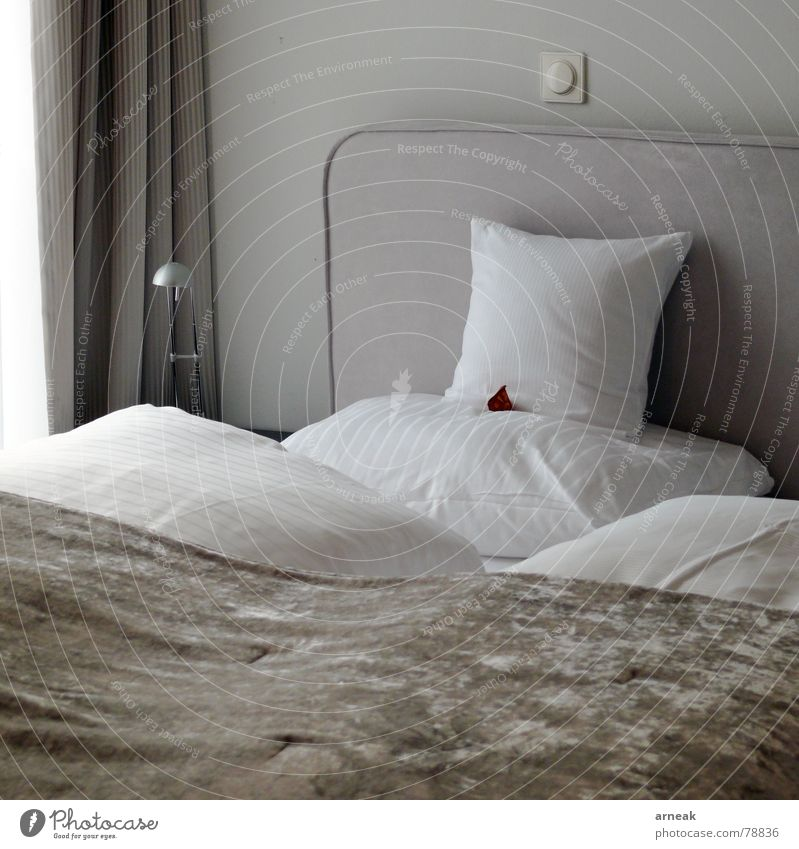 Hotel Sperber Sleep Bed Cushion Switch Interior shot Rest Relaxation Gastronomy Bedroom Furniture Calm Pillow