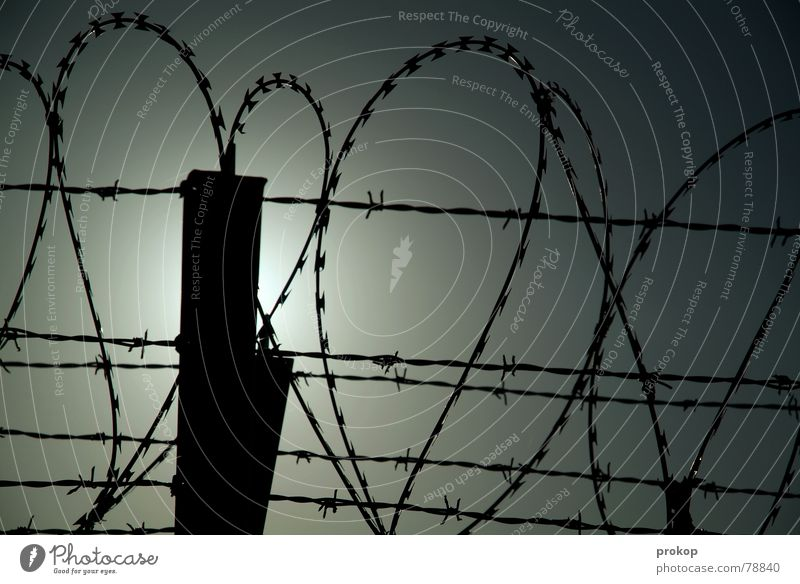 Beautiful Fear Heart Grief Longing Pain Fence Distress Lovesickness Cage Barbed wire Get stuck Barbed hook