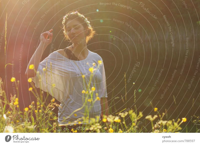 Nature Youth (Young adults) Beautiful Relaxation Young woman 18 - 30 years Adults Warmth Movement Feminine Natural Happy Freedom Time Dream Illuminate