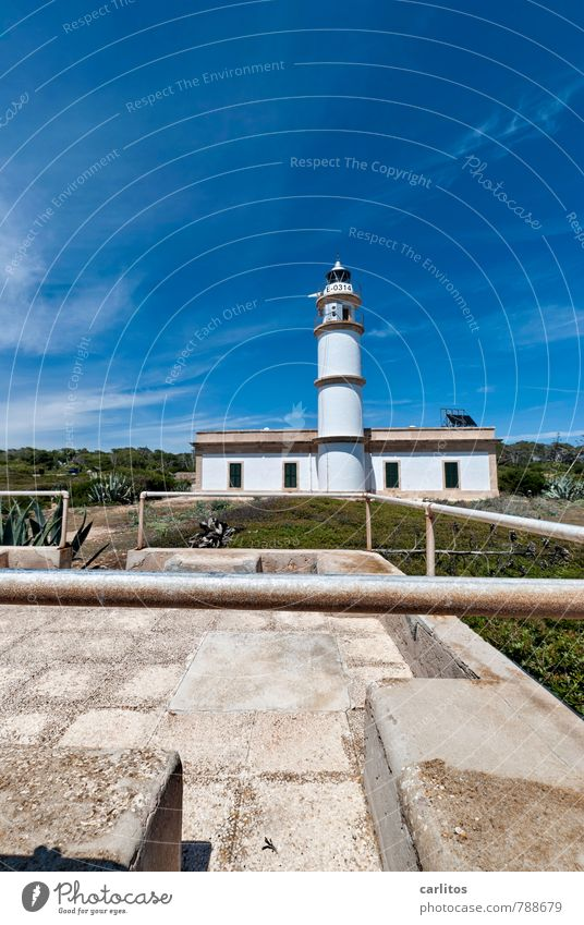 Cabo de ses Salines Sky Summer Warmth Stand Lighthouse Safety Tower Building Handrail White Blue Vertical Tall Far-off places Stone pine Mediterranean Majorca