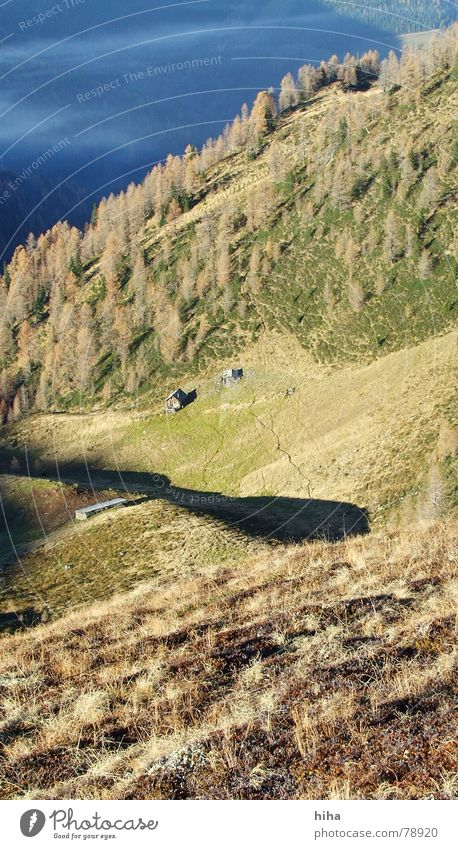 silence in autumn ... a place of rest Autumn Larch Fog Calm Grass Forest Mountain Contentment Shadow Hut long shadows grubech Pasture Mulde