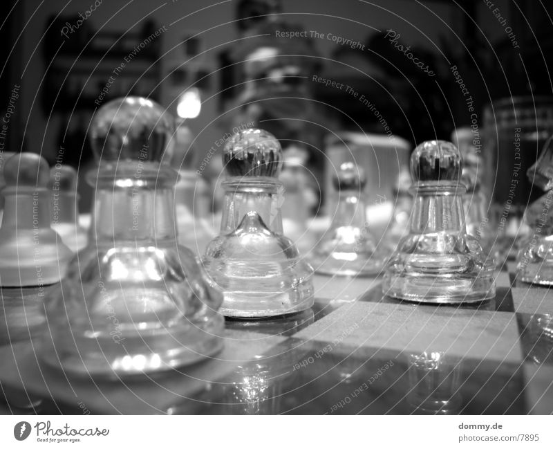 White Black Leisure and hobbies Wooden board Chessboard Black & white photo
