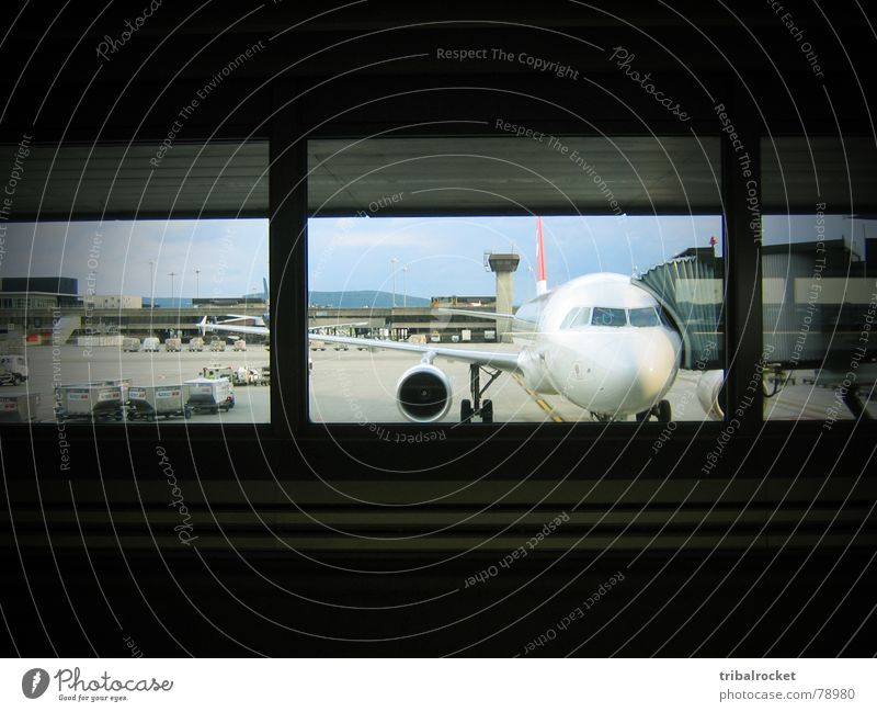 Window Airplane Flying Transport Switzerland Airport In transit Jet Zurich Aircraft Passenger plane Control desk