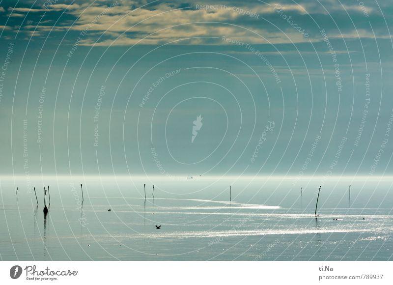 Nature Blue White Water Landscape Calm Black Coast Gray Flying Waves Contentment Beautiful weather Observe Elements Joie de vivre (Vitality)