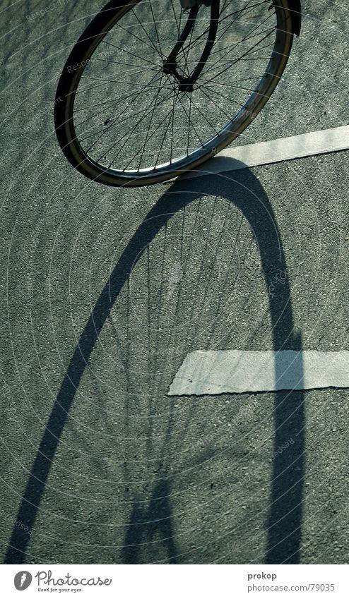 Eight on asphalt Hub Bicycle Calm Stagnating Asphalt Leisure and hobbies Safety Peace Shadow Fatigue Fear Street immobility