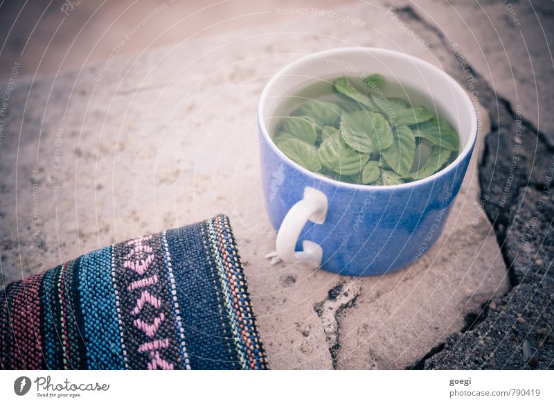 mint tea Tea Cup Relaxation Drinking Fragrance Fluid Fresh Blue Multicoloured Green Contentment To enjoy Wall (barrier) Blanket Colour photo Exterior shot