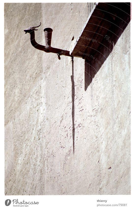 horns of the sun Ornament Detail shadow window sill blind blind holder capricorn animal Wall (barrier)