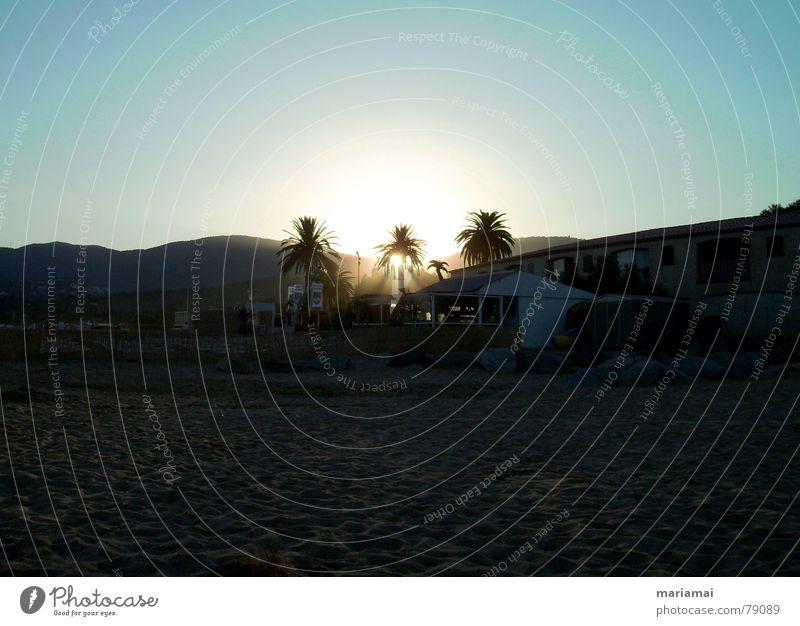 Nature Beautiful Sky Sun Ocean Blue Summer Beach Vacation & Travel Calm Relaxation Sand Reading Peace France Palm tree